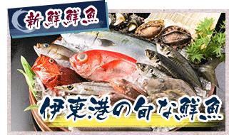 新鮮鮮魚 伊東港の旬な鮮魚